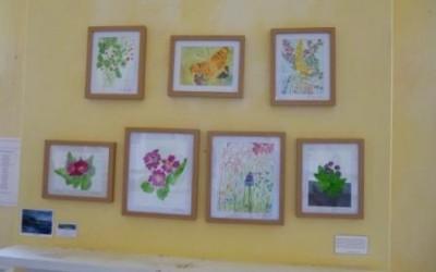 The Living Tree Art Exhibition, autumn 2015
