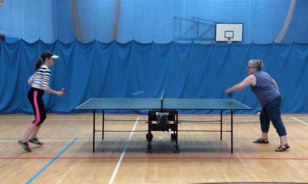 Living Tree Table Tennis