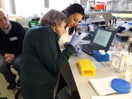 Southampton Hospital's Cancer Research Laboratories