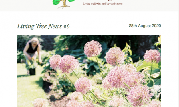 Living Tree News 26 August 2020