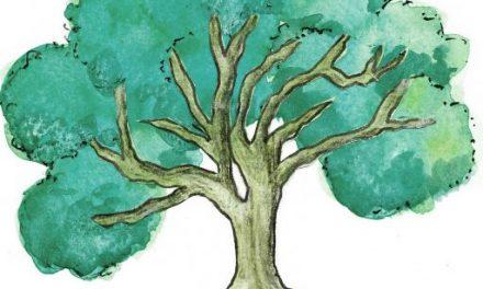 Living Tree News 39   October 2021